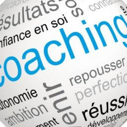 Champs d'application du coaching
