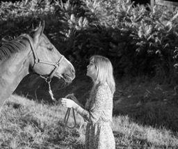 Illustration article blog AGP Coaching. Coaching cheval expérimentation
