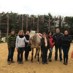 team building facilité par le cheval