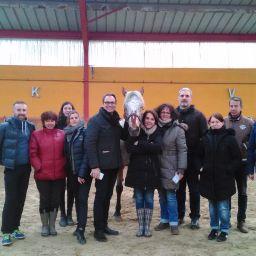 Team Building facilité par le Cheval - Fénicat