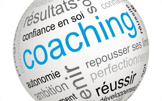 Champs d'application du coaching