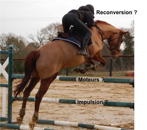 La reconversion professionnelle : moteurs, impulsion et profil équin