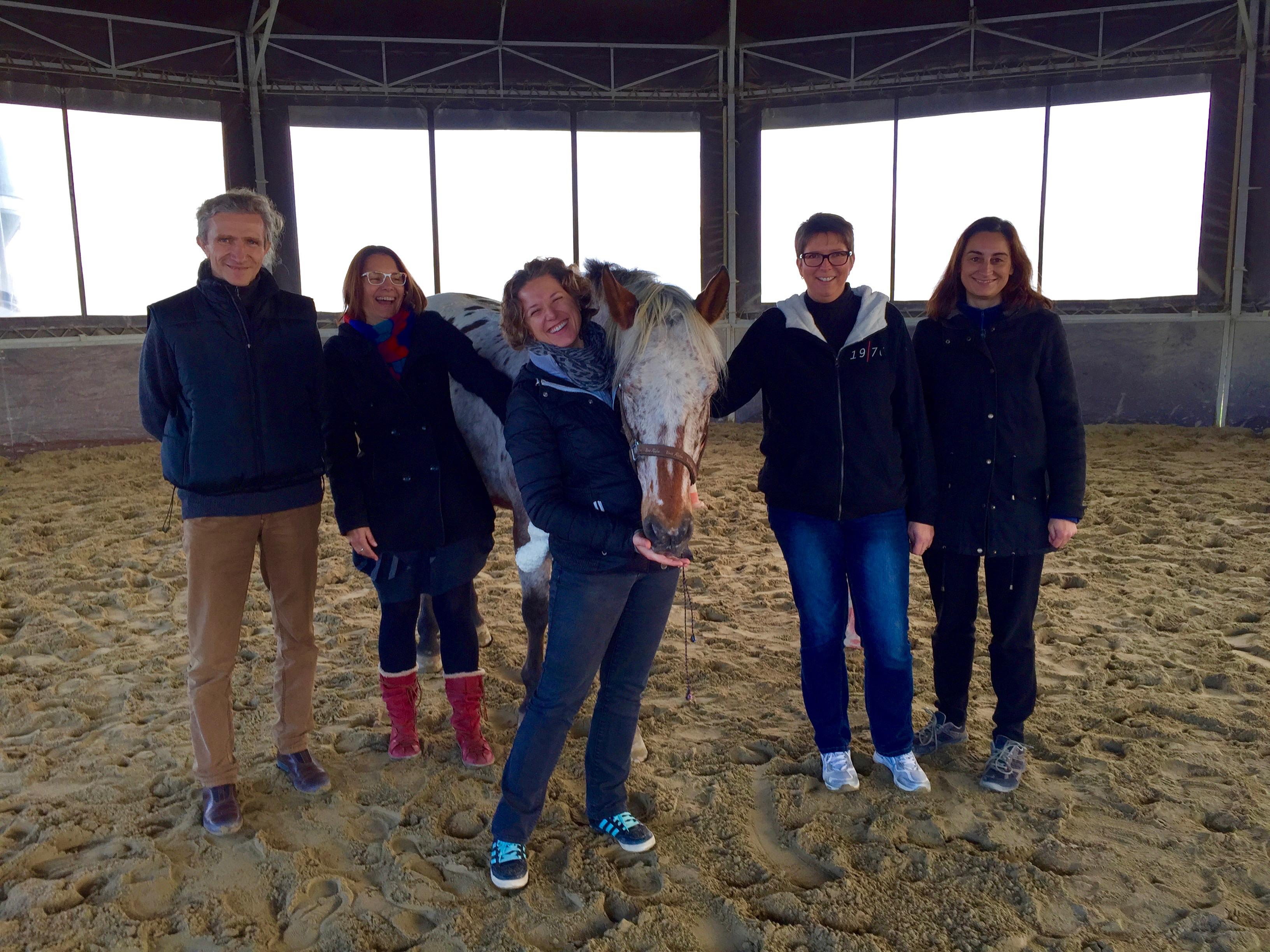 Témoignages Team Building facilité par le Cheval novembre 2016