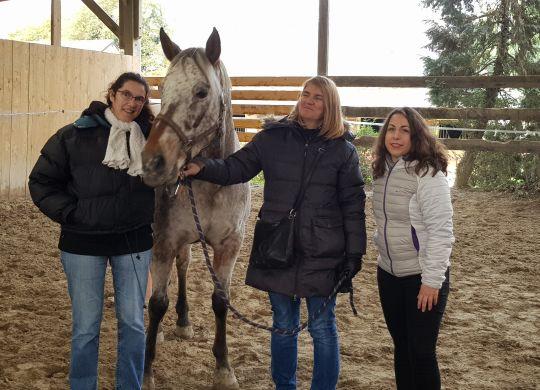 Coaching facilité par le Cheval